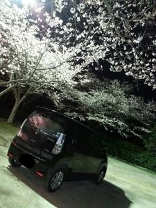 No.169 「お花見」