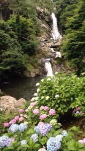 No.39 見返りの滝
