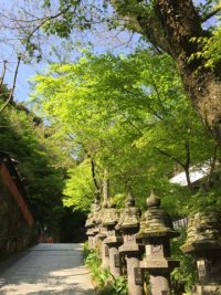 NO.065「新緑の坂道」