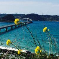 NO.066「春の角島」