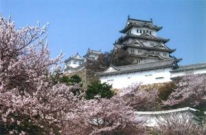 No.038 「桜と城」