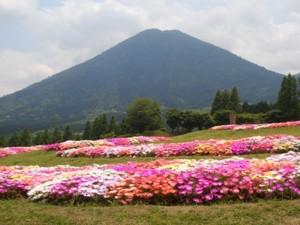 No.046 「春の高原」