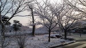 No.111 「冬の訪れ」