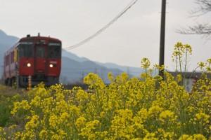 No.060 「春③」
