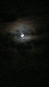 no117 夜空