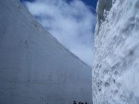 No.064 立山黒部雪の大谷