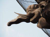No.084 木鼻彫刻の象