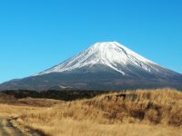 No.111 富士山とすすき