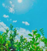 No.128 春の温度④