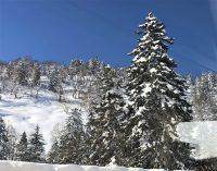 No.129 大雪山の冬山
