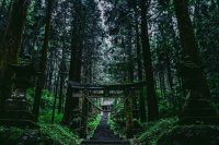 No.041 上色見熊野座神社