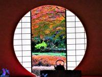No.094 明月院円窓の紅葉